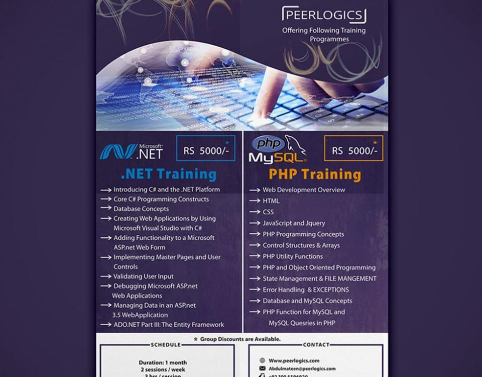 Brochure Design for Peerlogics